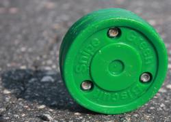 green-biscuit-snipe